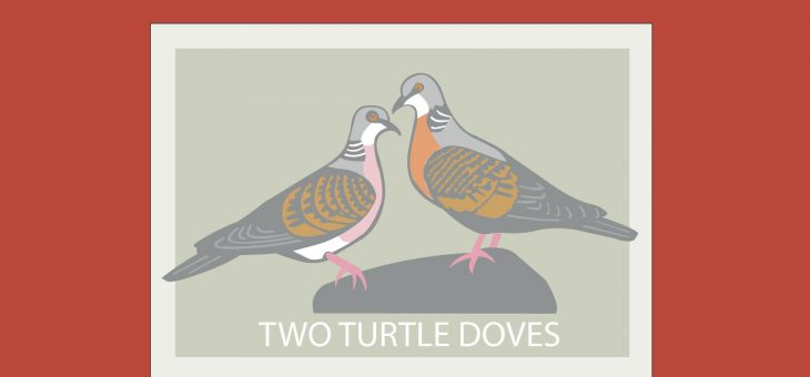 Turtle Doves are not just for Christmas